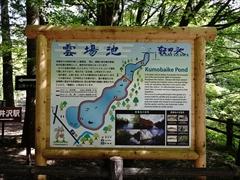 軽井沢 雲場池 案内図