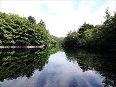 軽井沢 雲場池 正面から風景