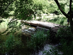 軽井沢 雲場池 最初の橋