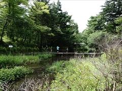 軽井沢 雲場池 折返し地点から雲場池