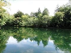 軽井沢 雲場池 正面から右側方向