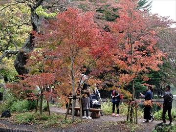 軽井沢 雲場池 雲場池 入口付近の紅葉