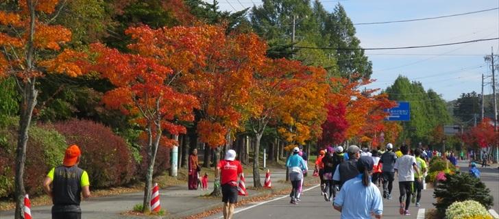 軽井沢国道18号の紅葉が見頃です