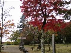 見晴台 紅葉