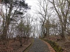見晴台への山道