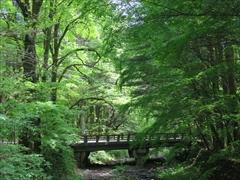 矢ヶ崎川から二手橋