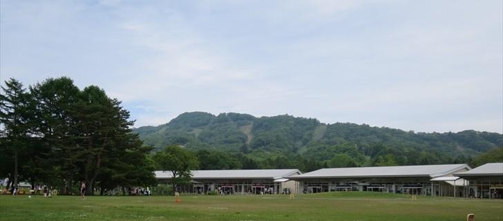 軽井沢のアウトレットのガーデンモールが新緑になっています