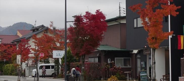 軽井沢 軽井沢本通り 紅葉