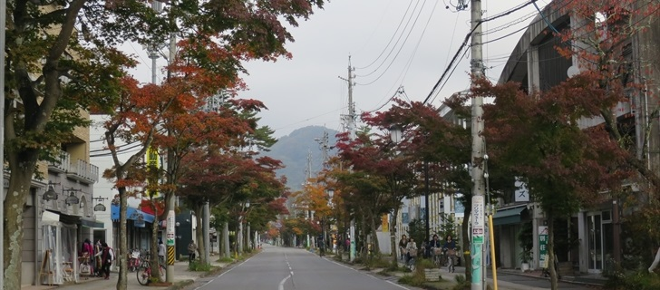 軽井沢本通り(国道133号)の紅葉が色づき始めました