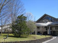 軽井沢駅 北口 コブシの花 軽井沢