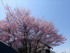 軽井沢 軽井沢本通り横道
