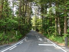 軽井沢 軽井沢 別荘地