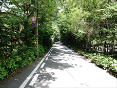 軽井沢 雲場池方面
