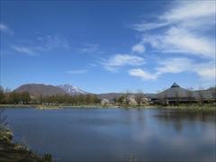 矢ヶ崎公園 離山・浅間山・桜