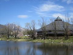 浅間山・大賀ホール 桜