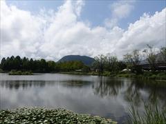 公園の池から離山