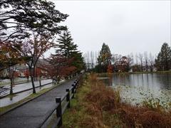 軽井沢 矢ヶ崎公園遊歩道 29日雨